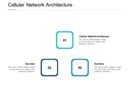 Cellular Network Architecture Ppt Powerpoint Presentation Infographic Template Icons Cpb
