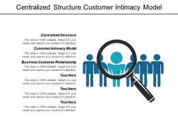 Centralized Structure Customer Intimacy Model Business Customer Relationship Cpb