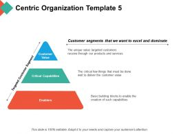 Centric Organization Customer Segments That We Want To Excel And Dominate