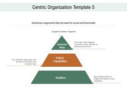 Centric Organization Template Value Customer Centric Marketing Ppt Slides