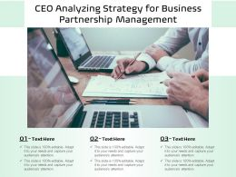 CEO Analyzing Strategy For Business Partnership Management