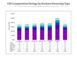 CEO Compensation Package By Business Ownership Type