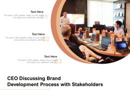CEO Discussing Brand Development Process With Stakeholders