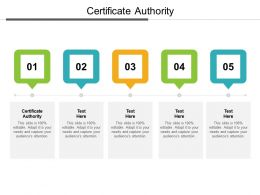 Certificate Authority Ppt Powerpoint Presentation Pictures Format Ideas Cpb