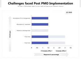 Challenges Faced Post PMO Implementation