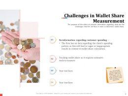 Challenges In Wallet Share Measurement Extensive Powerpoint Presentation Format