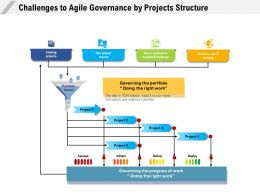 Challenges To Agile Governance By Projects Structure