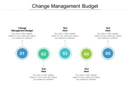 Change Management Budget Ppt Powerpoint Presentation Pictures Diagrams Cpb