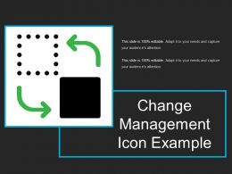Change Management Icon Example