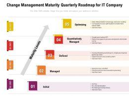 Change Management Maturity Quarterly Roadmap For IT Company