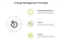 Change Management Principles Ppt Powerpoint Presentation Model Example Cpb