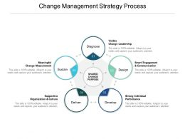 Change Management Strategy Process