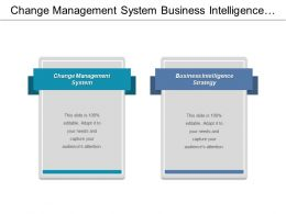 Change Management System Business Intelligence Strategy Brand Awareness Cpb