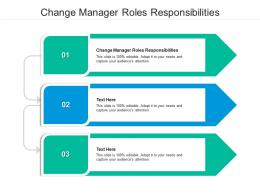 Change Manager Roles Responsibilities Ppt Powerpoint Presentation Professional Graphics Example Cpb