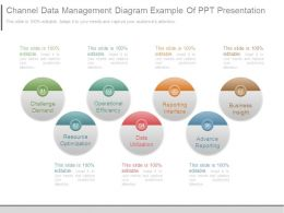 Channel Data Management Diagram Example Of Ppt Presentation