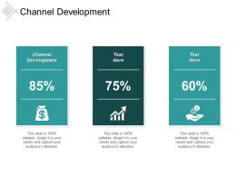 Channel Development Ppt Powerpoint Presentation Infographics Master Slide Cpb