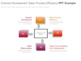 Channel Development Sales Process Efficiency Ppt Example