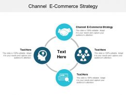 Channel E Commerce Strategy Ppt Powerpoint Presentation File Example Cpb