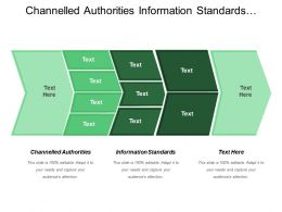 Channel Led Authorities Information Standards Information Governance Investment Strategic