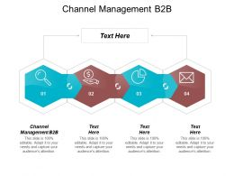 Channel Management B2B Ppt Powerpoint Presentation Pictures Samples Cpb