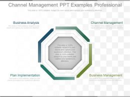 Channel Management Ppt Examples Professional
