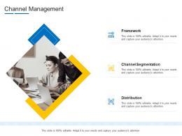 Channel Management Product Channel Segmentation Ppt Professional