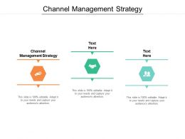 Channel Management Strategy Ppt Powerpoint Presentation Slides Aids Cpb