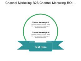 Channel Marketing B2b Channel Marketing Roi Intelligence Marketing Cpb