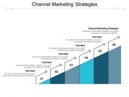 Channel Marketing Strategies Ppt Powerpoint Presentation Infographic Template Outline Cpb
