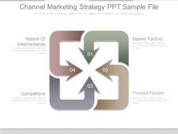Channel Marketing Strategy Ppt Sample File
