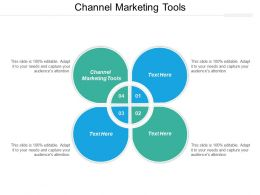 Channel Marketing Tools Ppt Powerpoint Presentation Icon Slide Download Cpb