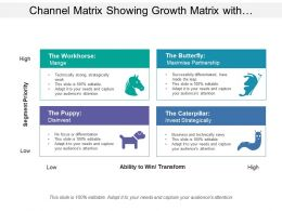 Channel Matrix Showing Growth Matrix With Channel Partner