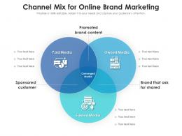 Channel Mix For Online Brand Marketing