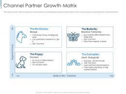 Channel Partner Growth Matrix Effective Partnership Management Customers