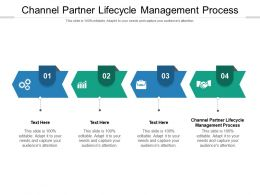 Channel Partner Lifecycle Management Process Ppt Powerpoint Presentation Professional Examples Cpb