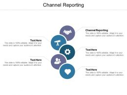 Channel Reporting Ppt Powerpoint Presentation Ideas Samples Cpb