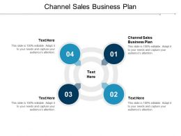 Channel Sales Business Plan Ppt Powerpoint Presentation Professional Templates Cpb