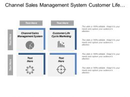 Channel Sales Management System Customer Life Cycle Marketing Cpb
