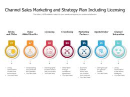 Channel Sales Marketing And Strategy Plan Including Licensing