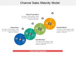 Channel Sales Maturity Model