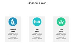 Channel Sales Ppt Powerpoint Presentation Professional Example Cpb