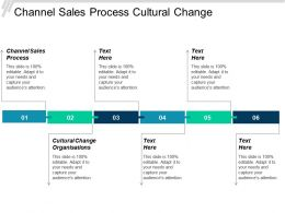 Channel Sales Process Cultural Change Organisations Governance Model Cpb