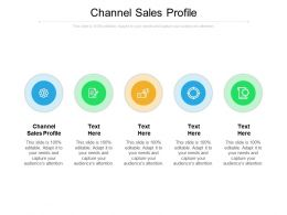 Channel Sales Profile Ppt Powerpoint Presentation Professional Deck Cpb