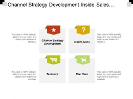 Channel Strategy Development Inside Sales Market Assessment Clinical Evaluation