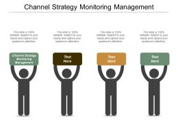 Channel Strategy Monitoring Management Ppt Powerpoint Presentation Professional Display Cpb