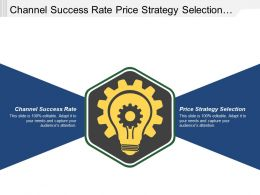 Channel Success Rate Price Strategy Selection Executing Product Strategy