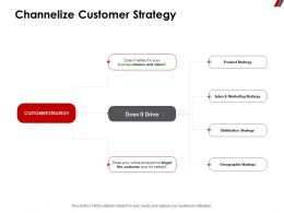 Channelize Customer Strategy Sales Ppt Powerpoint Presentation Visual Aids Show