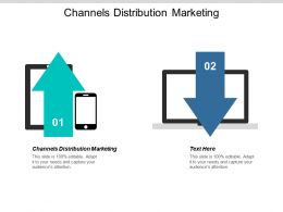 Channels Distribution Marketing Ppt Powerpoint Presentation Show Graphics Template Cpb