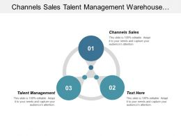 Channels Sales Talent Management Warehouse Management Capital Management Cpb