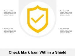 Check Mark Icon Within A Shield